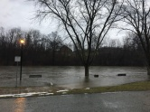 Approx day 2 of the flooding. This is the area of the canoe launch near my house. It's up really high and took over the parkinglot. Those black items are benches.