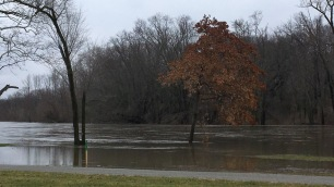 Photo of the St. Joseph River along Riverside Dr. This was a few hours before the river took over the road and they had to close it. This is near my house.
