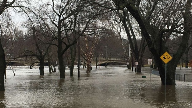 The area of the Duck Pond that is across from the St. Joseph River. This was incredible for me to see.