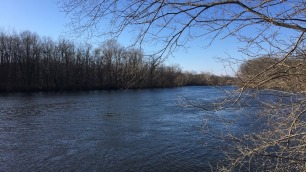 The St. Joseph River from St. Patrick's Park about 2 weeks after the crest.